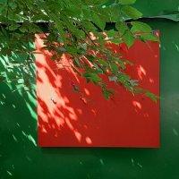 Красный квадрат :: Tanja Gerster