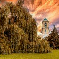 Свято-Даниловский монастырь :: Leo Alex Photographer
