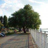 На набережной :: Вера Щукина