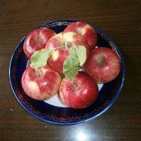 Яблочки :: MarinaKiseleva
