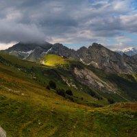 летнее утро в горах :: Elena Wymann