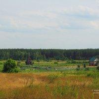 Вид на деревню с дороги :: Сергей Воинков