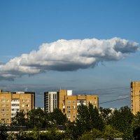 Злой ворюга крокодил наше солнце проглотил! :: Игорь Герман