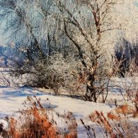 Зимняя рапсодия :: Novikov38 Новиков