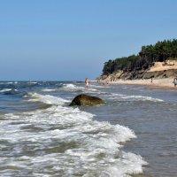 Море и сосны... :: Рита S