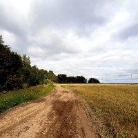 Безмятежность проселочных дорог :: Екатерина