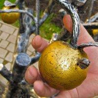В яблоках много железа.. :: east3 AZ