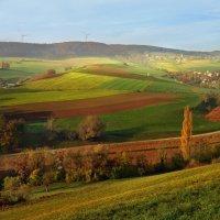 autumn :: Elena Wymann