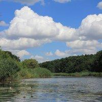 Река Икорец :: Gen Vel