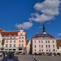Tallinn :: Татьянка ***