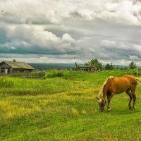 В деревне :: Дмитрий Иванов