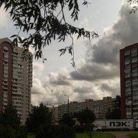 Санкт-Петербург :: Мария Маркушевич