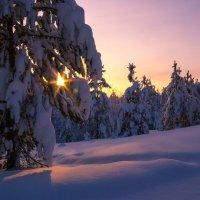 На закате :: Дмитрий Иванов