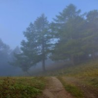 Туман... :: Станислав Иншаков