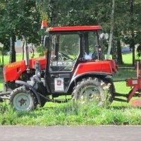 Трактор-косилка :: Дмитрий Никитин