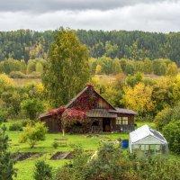 Деревня Медвежье :: Алексей Сметкин