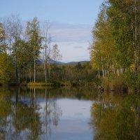 Утро на озере.. :: Татьяна Башкирова