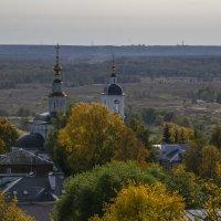 Вид на Вознесенскую церковь со смотровой башни :: Сергей Цветков