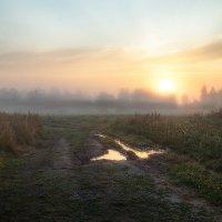 туманное утро сентября :: Эльмира Суворова