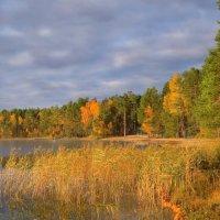 Осенний пейзаж :: Ната Волга