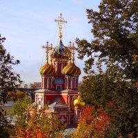 Рождественская церковь. :: Наталья Сазонова