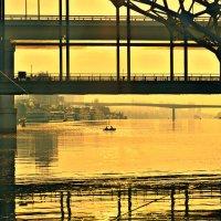 Городские рыбаки. :: евгения