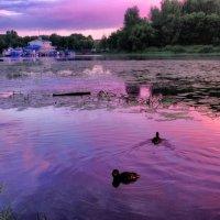 река Которосль :: Георгий А