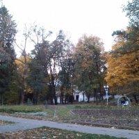 Осень... :: Назар