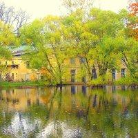 У Кухонного пруда в Ал. парке ЦС  - 1 :: Сергей