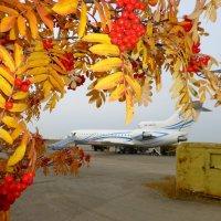 Осень на аэродроме Ухта.2014г. :: Alexey YakovLev