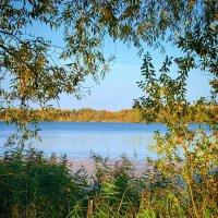 Осень на озёрном просторе :: Екатерина Василькова