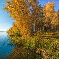 Как хороши осенние денечки :: Vladimbormotov
