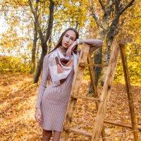 Осеннее настроение :: Марина Кулымова