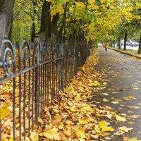 Осеннее настроение :: Арина