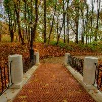 Гротесковые мосты в парке Царицыно :: Наталья Лакомова