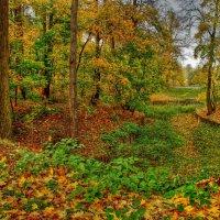 Осень в Царицыно :: Наталья Лакомова