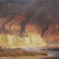 Сияющий лес :: Nikolay Svetin