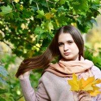 Осенние зарисовки :: Андрей