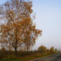 Дорога в туман :: Наталья Лакомова
