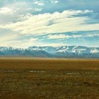 Курайская степь и Северо-Чуйский хребет :: Николай Мальцев