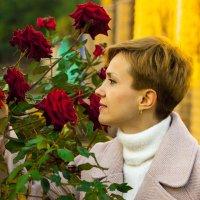 Розы в октябре :: Андрей Ананьев