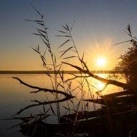 Графика восхода :: Сергей