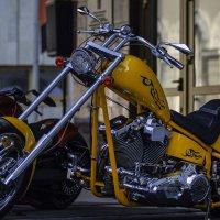 Harley Davidson Days Saint-Petersburg :: Sasha Bobkov