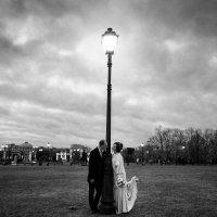 Свадьба :: sereja _kos Фотограф Москва