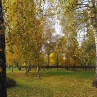Осенние :: юрий поляков