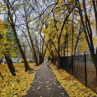 Ноябрь уж наступил, хоть Пушкин об этом и не писал :: Андрей Лукьянов