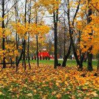 Осенний парк. :: Милешкин Владимир Алексеевич