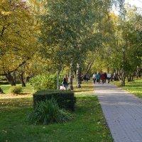 Прогулка в парке... :: Наташа *****