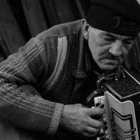 ....где то тихо играла гармонь :: Лиана Краснопольская .