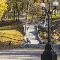 Струковский сад, ноябрь :: Александр Тарноградский